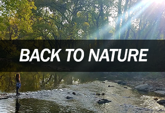 Back to Nature Ministry