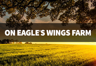 On Eagle's Wings Farm Ministry